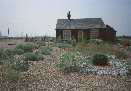 Derek Jarman's garden on the shingle beach. Dungerness. England.