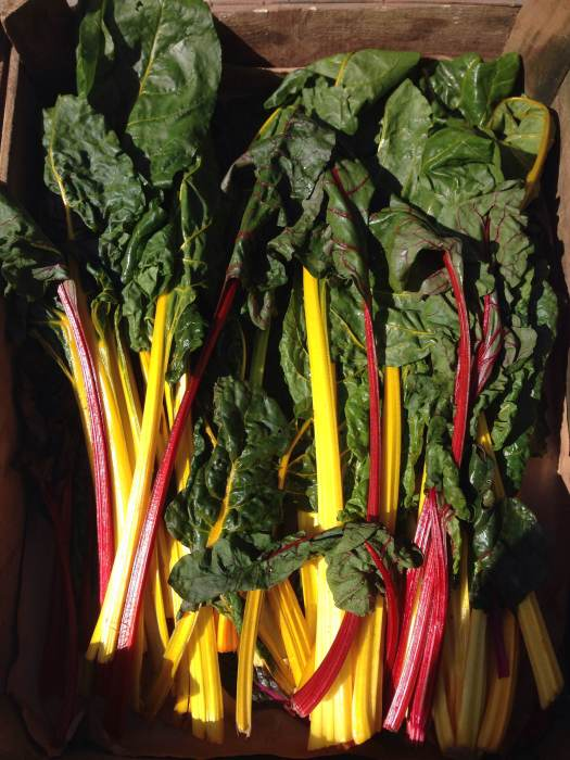 Swiss chard in a wooden box