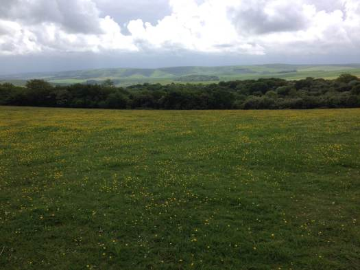 South Downs Way between Ditchling and Lewes.