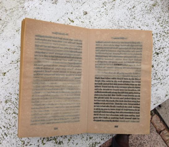 Abandoned book on wall, Brighton, England.